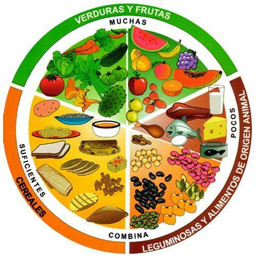 Elementos de una alimentación balanceada